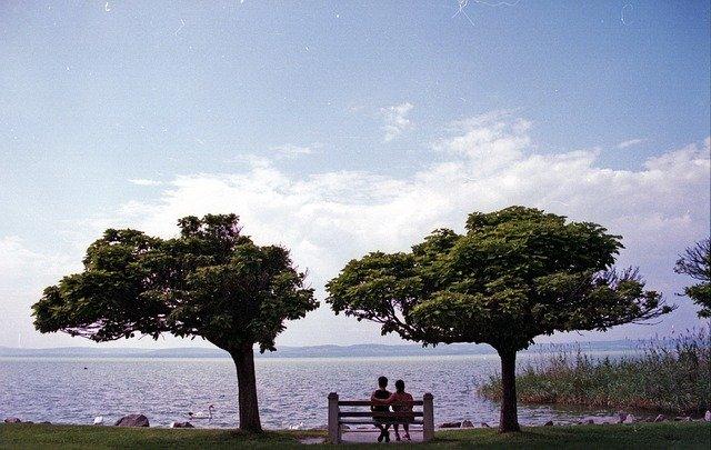 rande pod stromy