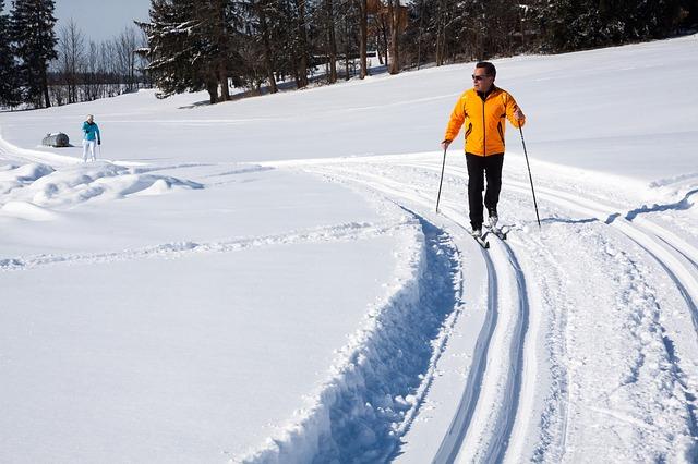 lyžování na běžkách
